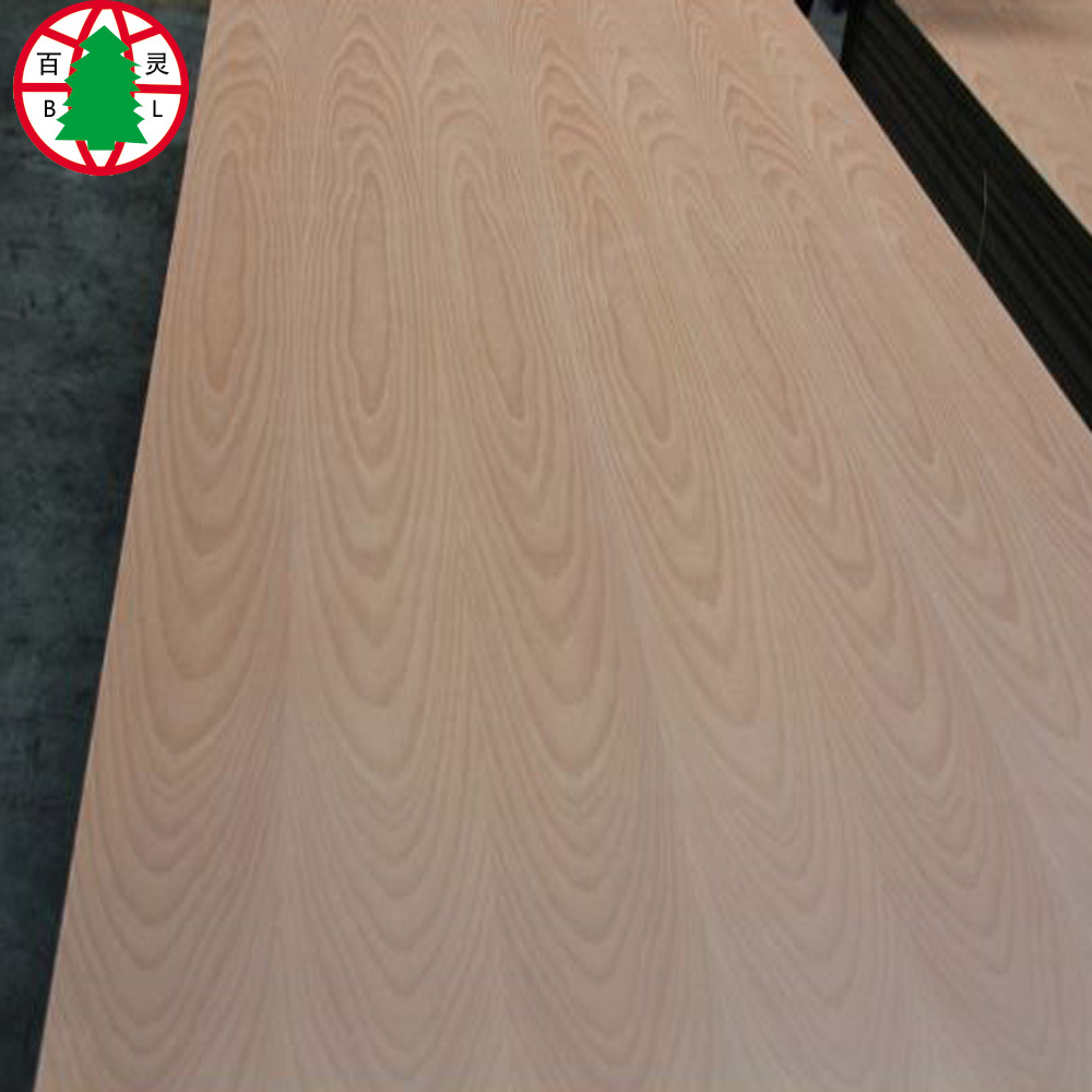 Beech Plywood 15