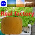 Venta caliente Fe Aminoácidos quelatos Minerales Nutrientes Fertilizantes Fertilizantes orgánicos puros