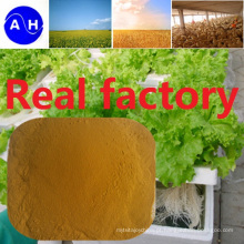 Hot Sale Fe Aminoácidos Quelato Minerais Nutrientes Fertilizantes Fertilizantes orgânicos puros