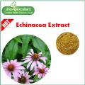 Extrait naturel d'échinacée, acide cichorique