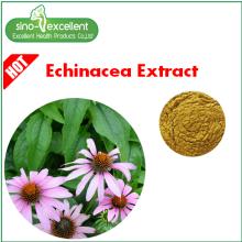 Extrait naturel d'échinacée Acide cichorique