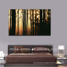 Impressive Sunrise Forest Picture Canvas Print