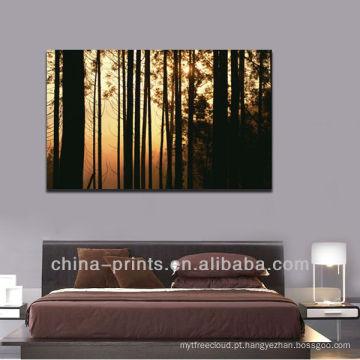 Imagem impressionante da floresta do nascer do sol impressão de canvas envolvida