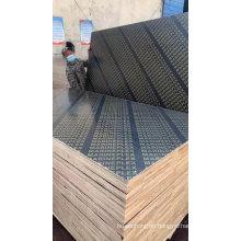 4x8 Concrete Construction Form Poplar Formwork Film Face Plywood