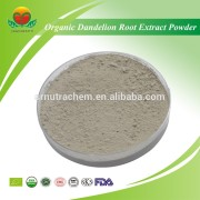 Best Selling Organic Dandelion Root Extract Powder