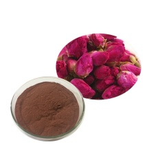 Factory Supply Rose Flowder Rose Juice Powder