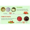 830g Gino marca de pasta de tomate en conserva de alta calidad