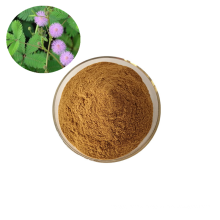 Hot selling pure natural mimosa hostilis root bark extract powder mimosa extract