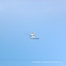 Высокое Качество Очень Небольшой Дуги Неодимия Ndfeb Постоянного Магнита И Ts16949