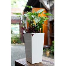 (BC-F1051) Pote de flor auto-riego plástico del diseño de moda
