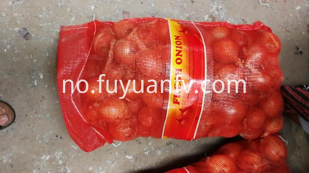Fresh Gansu Onion
