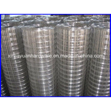 Popular Sale 1 Inch Galvanized /Electro Galvanized Welded Wire Mesh