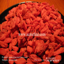 New Crop Big Size Ningxia Dried Goji Berries