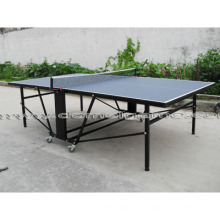 Table Tennis Table (DTT9028)