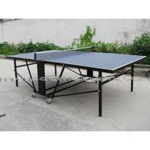 Mesa de tênis de mesa (DTT9028)