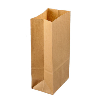 Small Brown Kraft Paper Bag