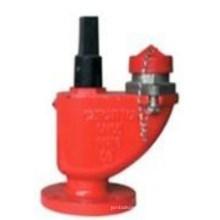 Unter Boden und in Tür Feuer Hydrant