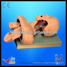Maniquí médico avanzado de la intubación electrónica, modelo de la tráquea