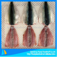 frozen cheap mackerel fillet in fish for perfect supplier