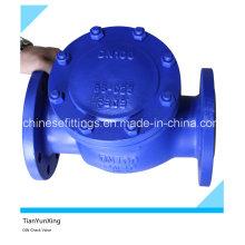 En1092-1 En558 Обратный клапан с фланцевым фланцем из литой стали