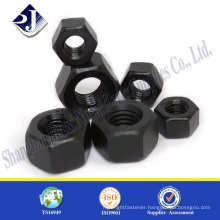 Competitive Price DIN934 Hex Nut