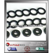 Ring Bonded Neodymium ( NdFeB) Magnet