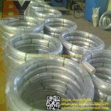 Galvanizado Wire Oval 2.2X2.7mm, 2.4X3.0mm para Farm Fencing