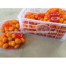 2013 fresh nanfeng baby mandarin from BROTHER KINGDOM