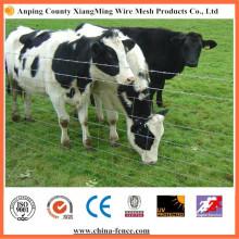 Clôture de nœud à charnière pour bétail / mouton / cerf