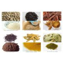 High Quality 100% Pure Natural Litsea Cubeba Oil 68855-99-2