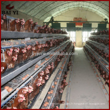 Nouveau Design Save Energy Automatic Cages d'élevage de poulets à vendre