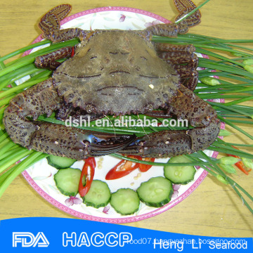Frozen Black Crab,Frozen Crab,