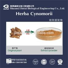 5:1 10: 1 20:1 supplements caulis cynomorii extract powder