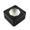 192W COB LED Grow Light Spektrum Penuh LED Grow Lights