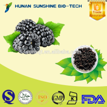Best quality for favorable price Dried Mulberry fruit
