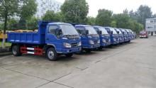 Forland 4 Ton απορριμμάτων ανατρεπόμενο φορτηγό