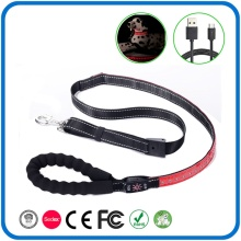 Led Glowing Lighted Dog Collar And Leash Set