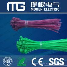 Nylon 66 attache-câble - couleur différente