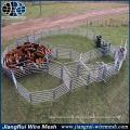 cattle yard design / galvanized cattle panel gate