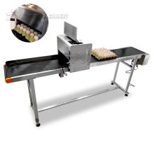 Multi-heads egg logo printing machine/eggs inkjet printer/egg  code printing machine with high quality