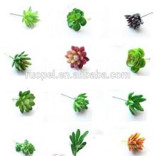 Оптовая продажа искусственных растений succuleent