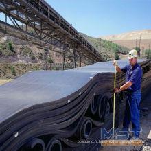 Nylon Conveyor Belt à vendre