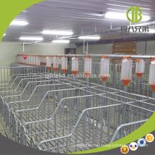 DEBA 2018 Schweinefarm Ausrüstung heiß verzinkt Schwein Schwangerschaft Kiste Sau Stall
