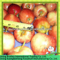 China red apple gala