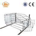 Galvanized Q235 Steel Gestation Stall For Babi
