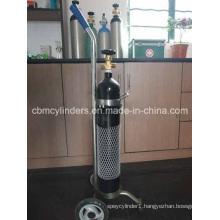 5L/7L/10L Oxygen Cylinder Trolleys