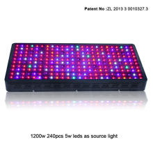 Indoor Led Plant Grow Light 1200W untuk Hydroponic