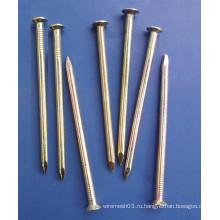 Дешевые оптовая лак деревянные гвозди железные гвозди