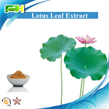 Weight control Lotus Leaf P.E. Lotus Leaf plant Extract