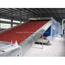 Secadora de banda de deshidratación vegetal